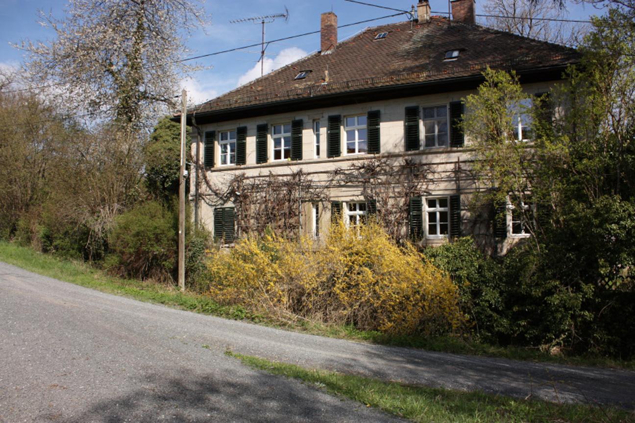 Forsthaus-Wuestung-Schmerb-Ebracher-Forst-Ausgrabung-Leitungsbau